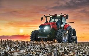 сельхозтехника, уборка кукурузы, hdr, тракторы 2019, урожай, трактор в поле, сельское хозяйство, case