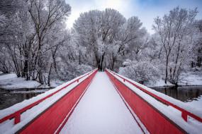 парк, мост, зима