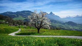 природа, пейзажи, дорога, лето, горы
