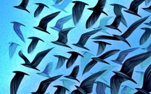 полет, птицы