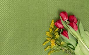 букет, тюльпаны, красные, цветы
