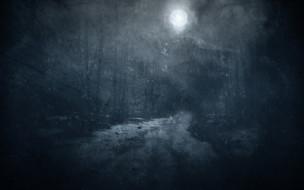 ночь, луна, лес