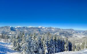 природа, лес, снег, деревья