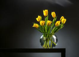 букет, фон, бутоны, ваза, тюльпаны