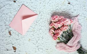 обои для рабочего стола 1920x1200 цветы, гвоздики, розовый