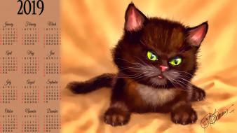 кошка, кот, черный