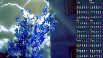 цветы, растение, облако, дом