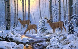 рисованное, животные,  олени, зима, олени