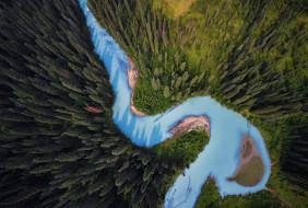вид сверху, лес, деревья, природа, река