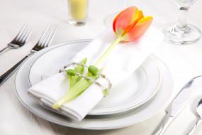 тюльпан, сервировка, посуда, цветок
