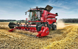 сельское хозяйство, уборка урожая, пшеница, hdr