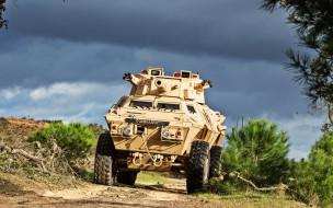 бронированная машина безопасности, бронетранспортер, американская армия, песочный камуфляж, бронетехника, сша, cadillac gage