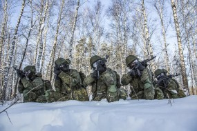 лес, оружие, снег, солдаты