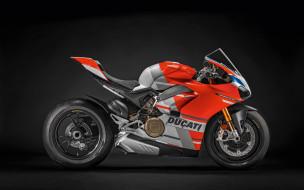 2019 ducati panigale v4 s corse, мотоциклы, ducati, серый, дукати, panigale, новый, оранжевый, вид, сбоку, итальянский, спортбайк