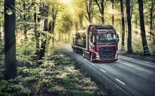 вольво, грузовики, 2019 volvo fh, lkw, hdr, лесная дорога