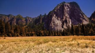 горы, лес, скалы, трава