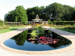 парк, пруд, цветы