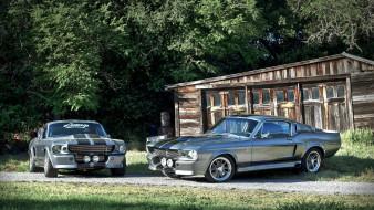 лес, серебристые, Ford Mustang, сарай