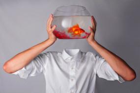юмор и приколы, аквариум