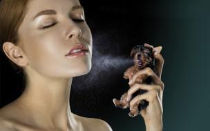 собака, девушка, лицо, парфюм
