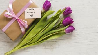 тюльпаны, подарок, надпись, бутоны