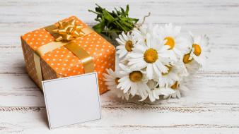 ромашки, букет, открытка, подарок