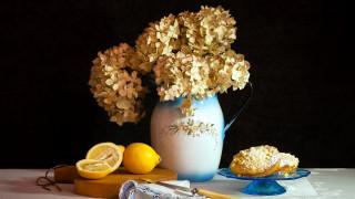 гортензия, лимон, кексы