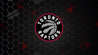 логотип, фон, Toronto Raptors