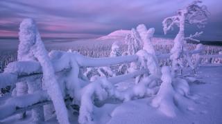 природа, зима, забор, снег