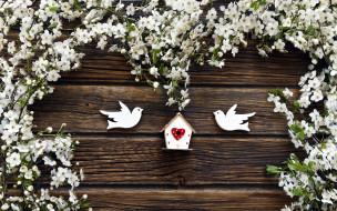 гнездо, голуби, цветущие, ветки