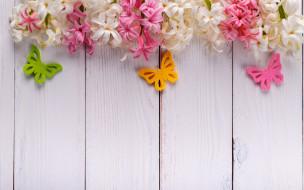 гиацинты, весна, бабочки