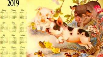 цветы, животное, свинья, птица, цыпленок, поросенок