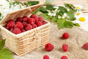 корзинка, малина, ягоды