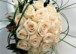 лента, белые, розы, букет