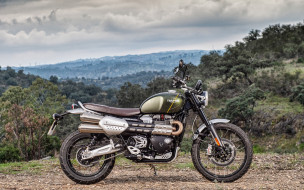 2019 triumph scrambler 1200 xc, мотоциклы, triumph, британские, природа