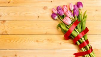 бутоны, лента, тюльпаны