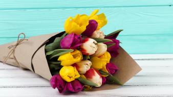бутоны, букет, тюльпаны