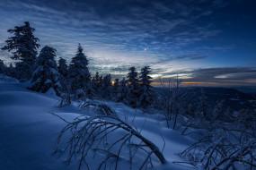 зима, снег, небо
