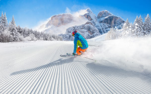 спорт, лыжный спорт, лыжник