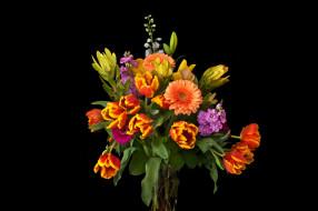 герберы, тюльпаны