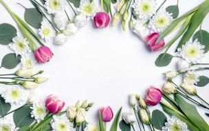 эустома, хризантема, тюльпан