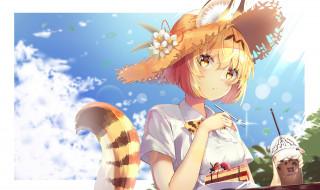 аниме, kemono friends, девушка