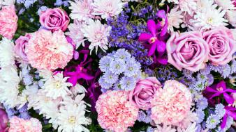 гвоздика, орхидея, роза