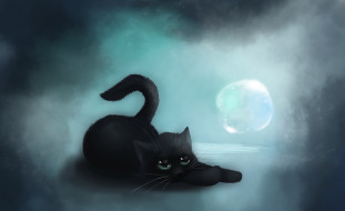 кот, черный, пузырь
