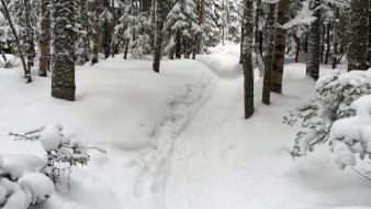 тропа, Снег