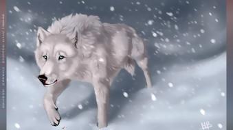 2019, снег, зима, белый, calendar, кровь, волк