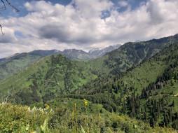зелень, Горы