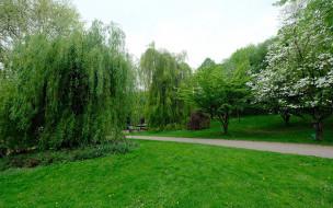 парк, весенний
