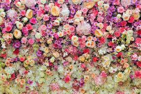 герберы, розы, гвоздики