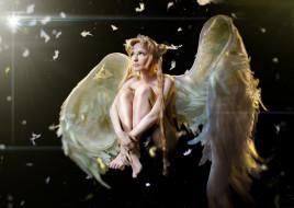 девушка, фон, крылья